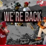 Palm Springs Power Baseball is Back at Palm Springs Stadium