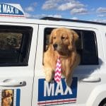 """Idyllwild Will Celebrate 4th of July to the """"Max"""""""