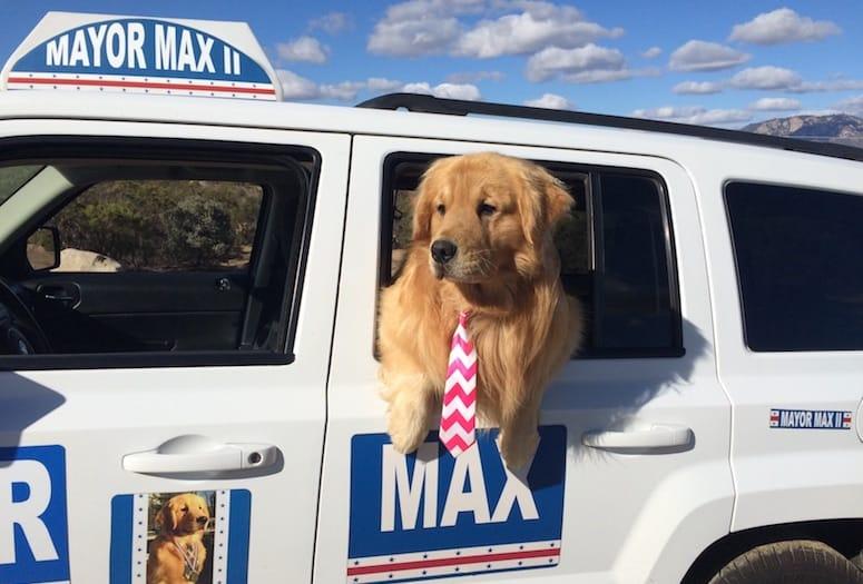 mayor max idyllwild