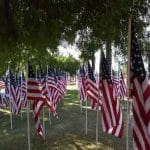Healing Field 2021, Patriot Park, All Day and Night in Cathedral City