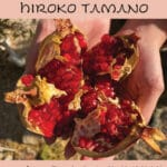 Pomegranate Harvest Celebration with Hiroko Tamano