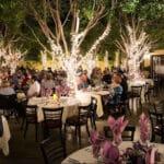 The Lavender Bistro Now Open for Our 14th Season in La Quinta